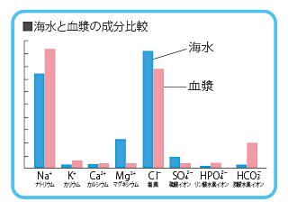 海水と血漿の成分比較